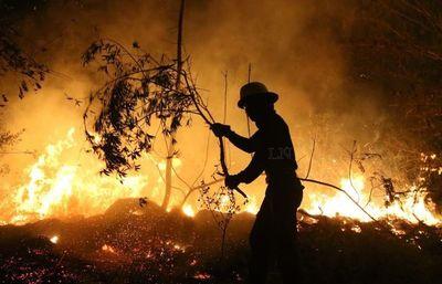 Incendios Forestales: BNF ofrece créditos a personas y empresas afectadas