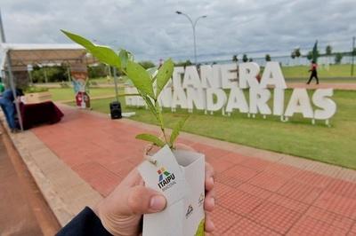 Itaipú apoya arborización con especies nativas