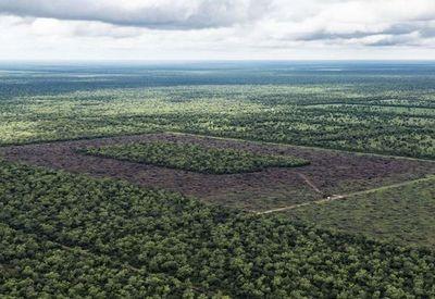 Uruguay invierte en el Chaco paraguayo