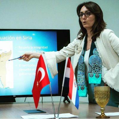 Acción armada es contra terroristas kurdos según embajadora turca