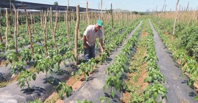 Don Juan, el  capo de la  agricultura