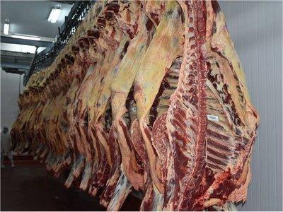 Sincerar precio de la carne reclama el sector ganadero