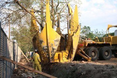 MOPC trasladó árboles en el Jardín Botánico
