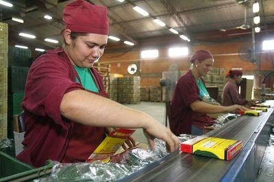 Paraguay y Colombia comienzan a robustecer relaciones comerciales