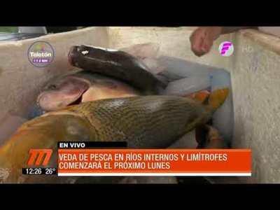 Veda pesquera inicia el próximo lunes