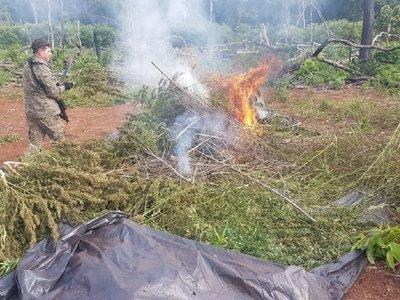 Conaderna alerta que reserva Morombí está tomada por narcotraficantes