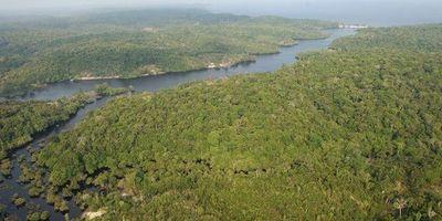 Asesinato de un guardián indígena vuelve a sacudir la Amazonía brasileña