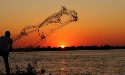 Inicia veda pesquera: MADES recuerda prohibición total de extracción de peces