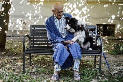 Animales de compañía ayudarían a enfrentar mejor trastornos mentales