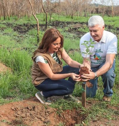 Inicia proyecto de reposición de árboles en el Parque Guasu Metropolitano