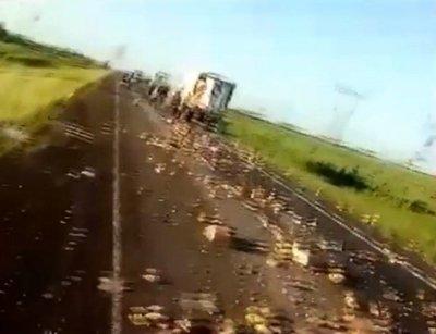 Fatal accidente de ómnibus paraguayo en Argentina