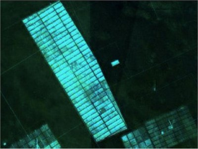 Infona inicia sumario por deforestación  en el Chaco