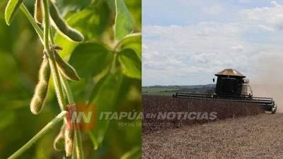 EL PROGRAMA DE BUENAS PRÁCTICAS AGROPECUARIAS DE LA COOP. NARANJITO TIENE SUS PRIMEROS RESULTADOS