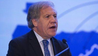 """La OEA rechaza una """"salida inconstitucional"""" a la situación en Bolivia"""