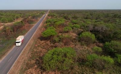 Nueve empresas cotizan para rehabilitar 75 km de la Ruta Transchaco
