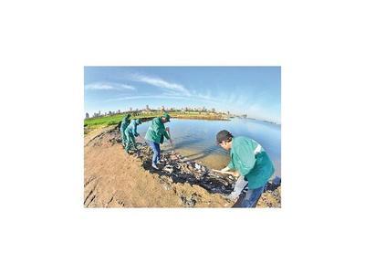 Sacan 30 ton. de basura de la Bahía tras otro día de limpieza