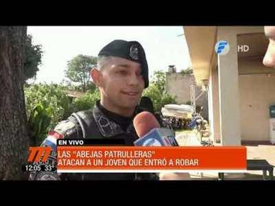 Abejas atacaron a un joven que entró a robar