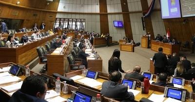 Diputada sugerirá modificación al PGN 2020
