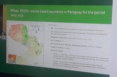 HOY / Reconocen a Paraguay por resultados en reducción de emisiones de carbono