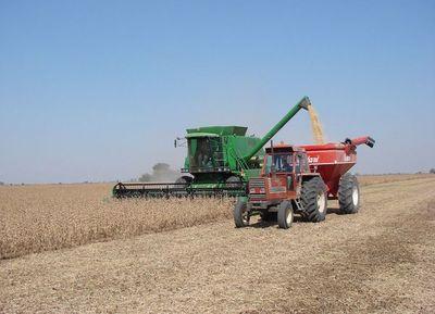 Exportaciones de soja cayeron casi 20% al cierre de octubre