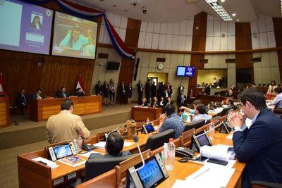 Diputados aprueba reajuste salarial del 7,3% para Ande