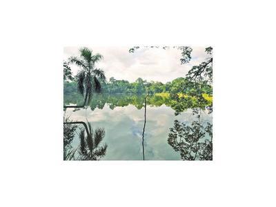 La Municipalidad y vecinos de CDE impulsan embellecer el  lago Yrendy