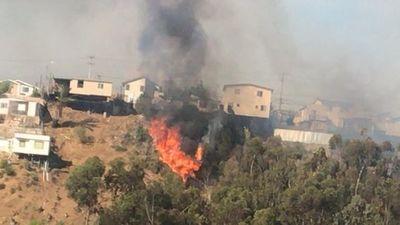 Incendios en Chile destruyen ocho viviendas y consumen más de 3.500 hectáreas