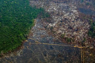 Récord de deforestación en el Amazonas y aumenta la presión sobre Bolsonaro