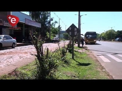 POLICIA AMBIENTAL INSTA A DENUNCIAR LA PODA DE ÁRBOLES Y QUEMA DE BASURAS