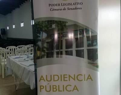 Concepción, sede de audiencia pública sobre alimentación escolar