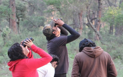 Paraguay será sede del mundial de observación de aves