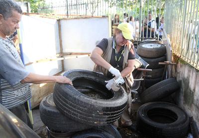 Salud Pública solicita eliminar criaderos por alerta de aumento en casos de dengue