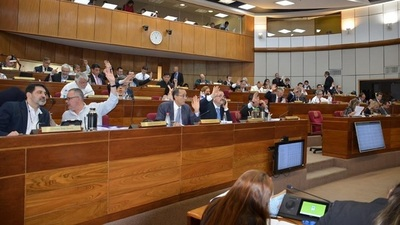 Senado sancionará hoy ley de PGN 2020