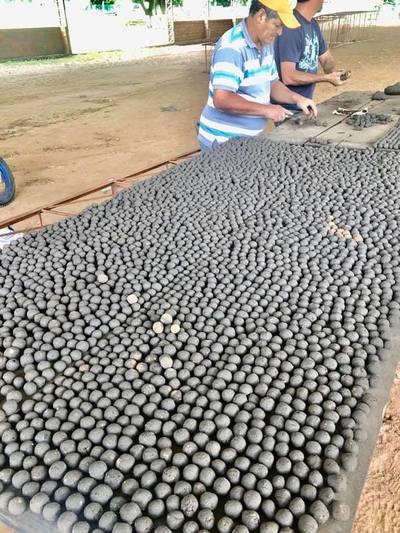 Lanzarán bombas de semillas para reforestar el Ybytyruzú