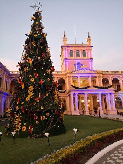Aves nacionales adornan árbol navideño del Palacio de López