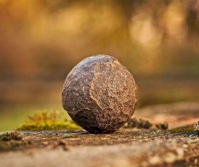 Pretenden reforestar el Ybytyruzú con bombas de semilla