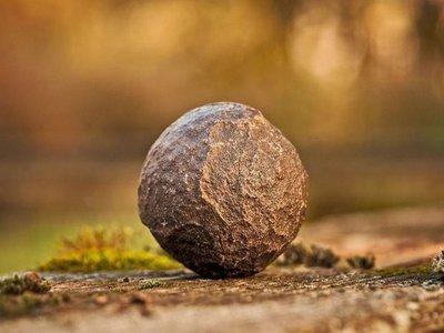 Bombas de semilla, la esperanza para reforestar el Ybytyruzú