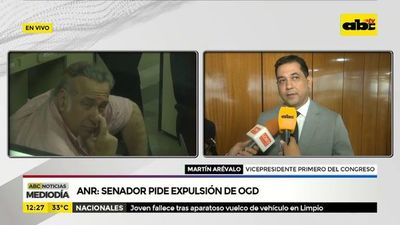 Senador pide que ANR expulse a OGD