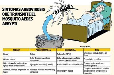 El dengue aumenta y la fiebre amarilla acecha
