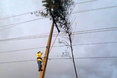 Sopló viento y 34 líneas de la ANDE están fuera de servicio