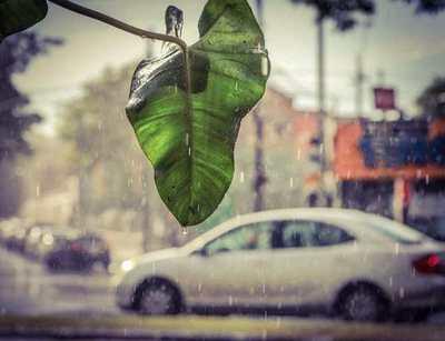 Anuncian una jornada calurosa y con lluvias