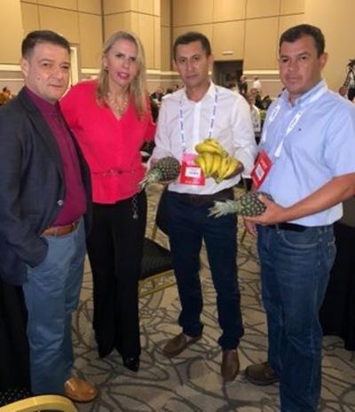 Primer envío de piña y banana paraguayas al mercado chileno