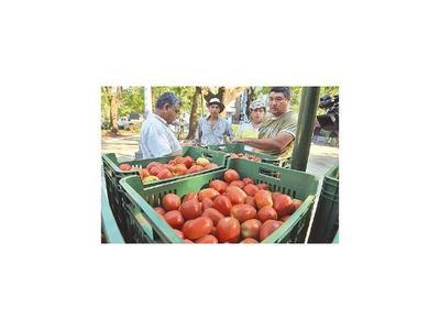 MAG creará centros de comercialización para productores frutihortícolas
