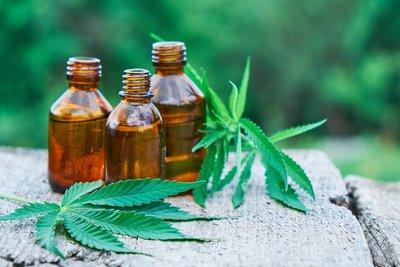 ONU aplaza votación para reducir restricciones en el uso terapéutico del cannabis