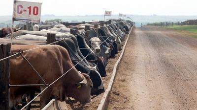 Chile y Rusia pagan menos por carne paraguaya debido a presión de Brasil