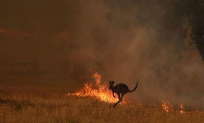 Australia moviliza 3.000 reservistas ante crisis de incendios catastróficos