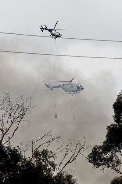 Destrozos cuantiosos en un día infernal de incendios en Australia