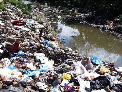 Arroyos colmatados de basura son  criaderos de lujo para los mosquitos
