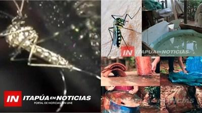 DENGUE: MÁS DE 1.170 PERSONAS AFECTADAS POR EL VIRUS A NIVEL PAÍS