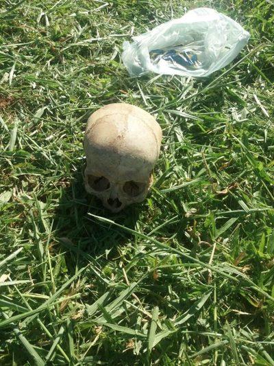 Hallaron cráneo durante limpieza en plaza de Lote Guazu